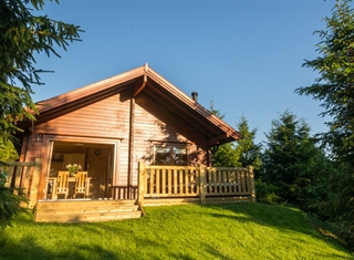Brewery Farm | Luxury Forest Lodges and Campsite near Dorchester